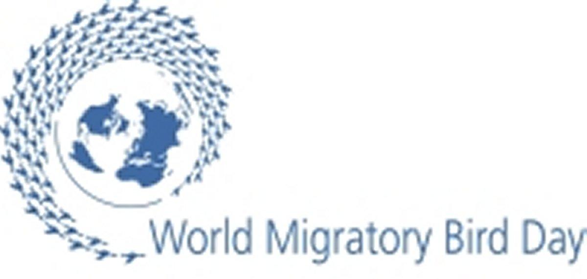 Animais > Aves > Dia Mundial das Aves Migrat�rias